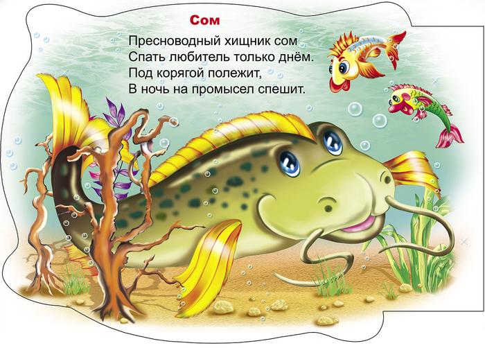 загадки в картинках про рыб подготовки природного