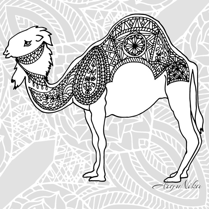 camel-style-adult