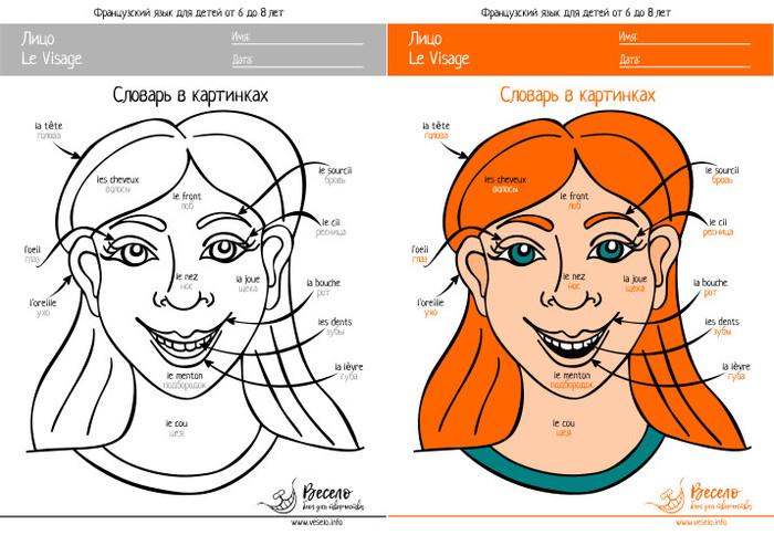 Французские слова в картинках для детей