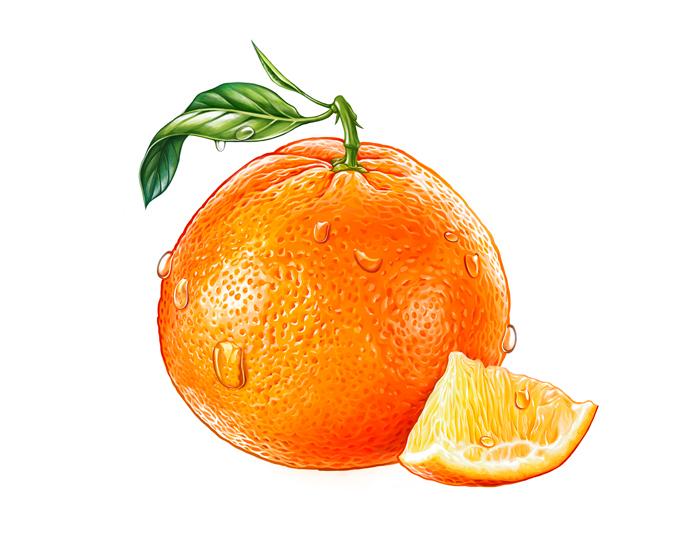 Апельсин картинки нарисованные