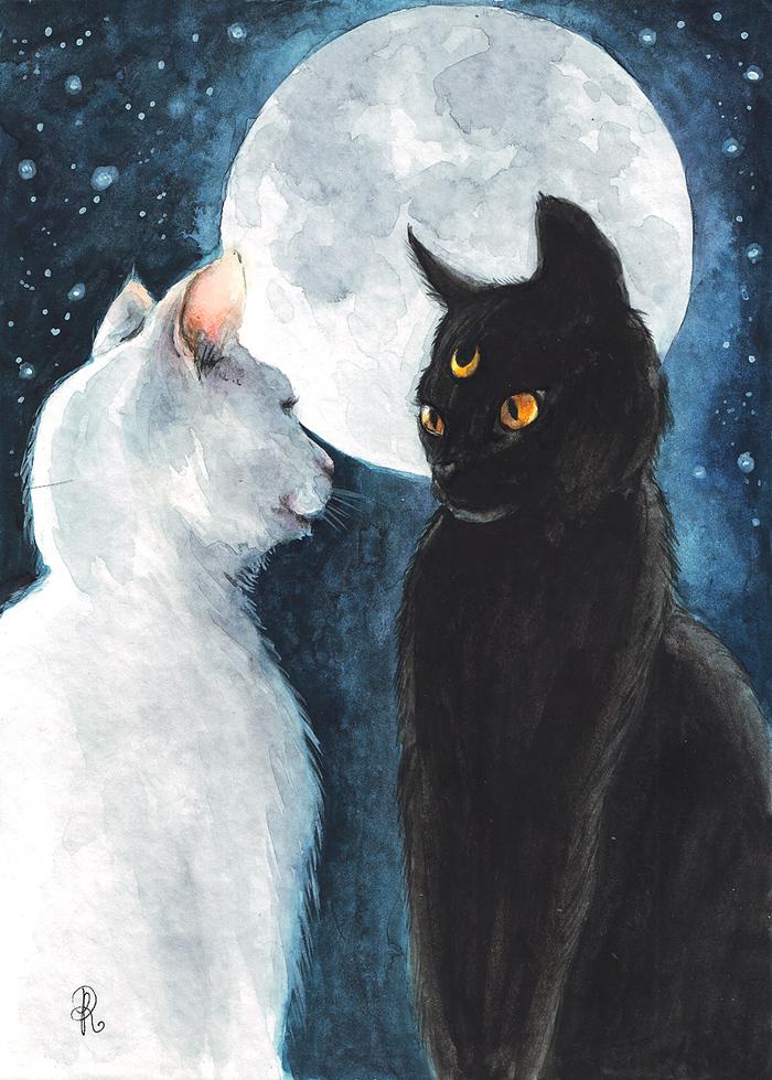 становятся кошки под луной картинки зона медленно теряет