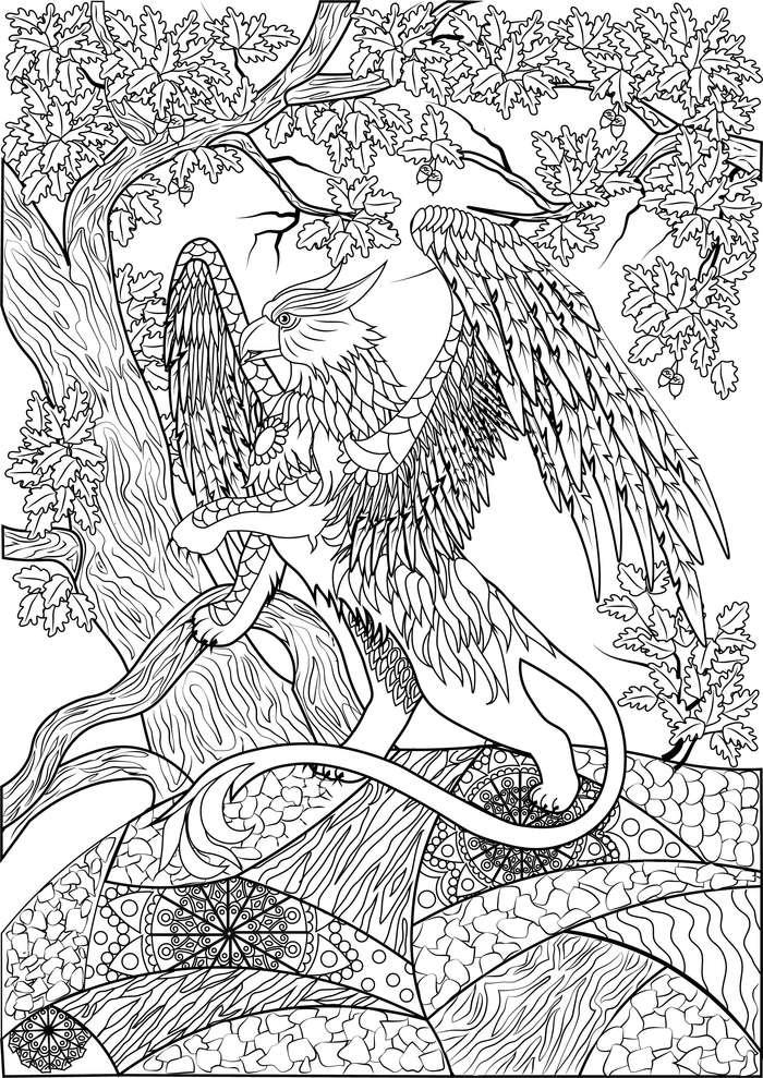 сообщество иллюстраторов иллюстрация грифон