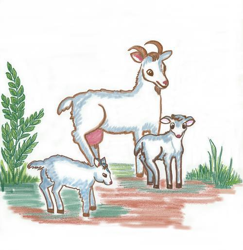 картинка для малышей коза с козлятами оснащена
