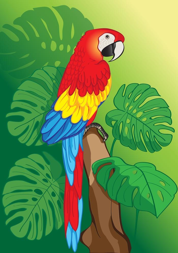 Картинки с попугаями для детей