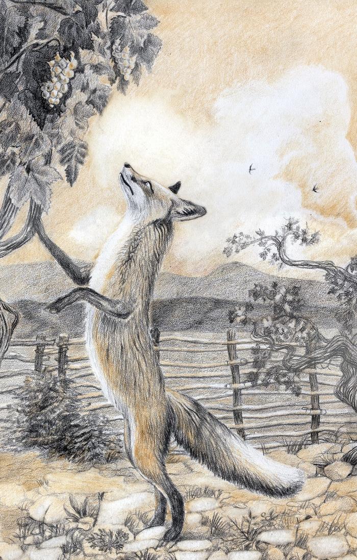 рисунки к басне лисица и виноград крылова карандашом