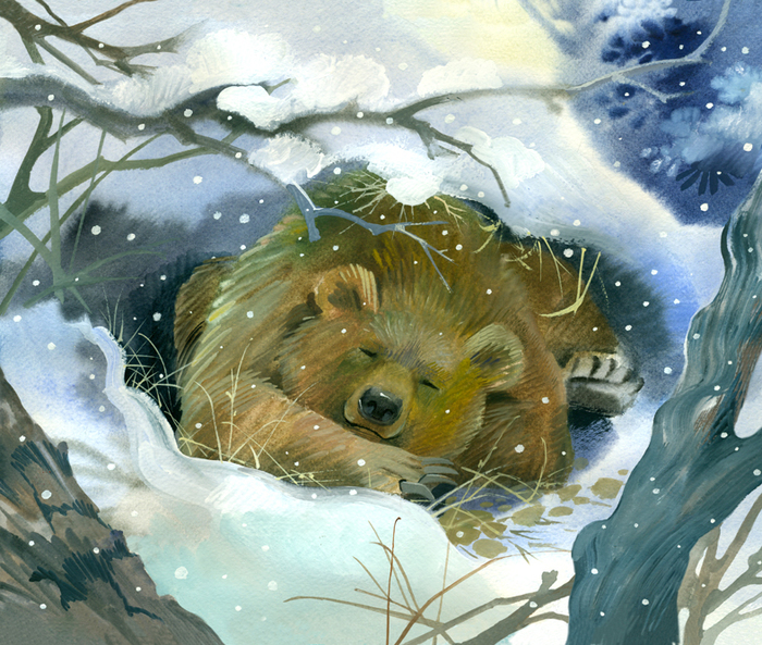 https://illustrators.ru/uploads/illustration/image/1162499/main_%D0%BC%D0%B5%D0%B4%D0%B2%D0%B5%D0%B4%D1%8C1.jpg