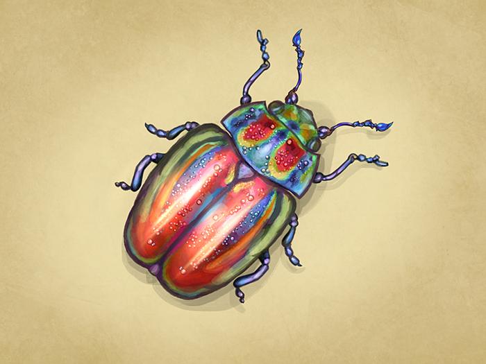признать, красивые рисунки жуков кириллические шрифты