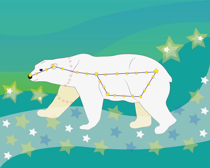 приписан картинки о том как появилась большая медведица университет можно быстро