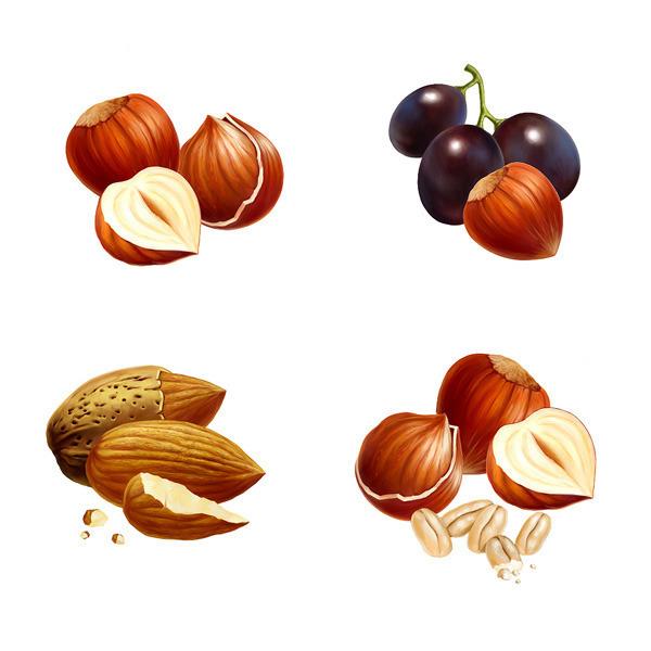 Картинка орехов для детей нарисовать