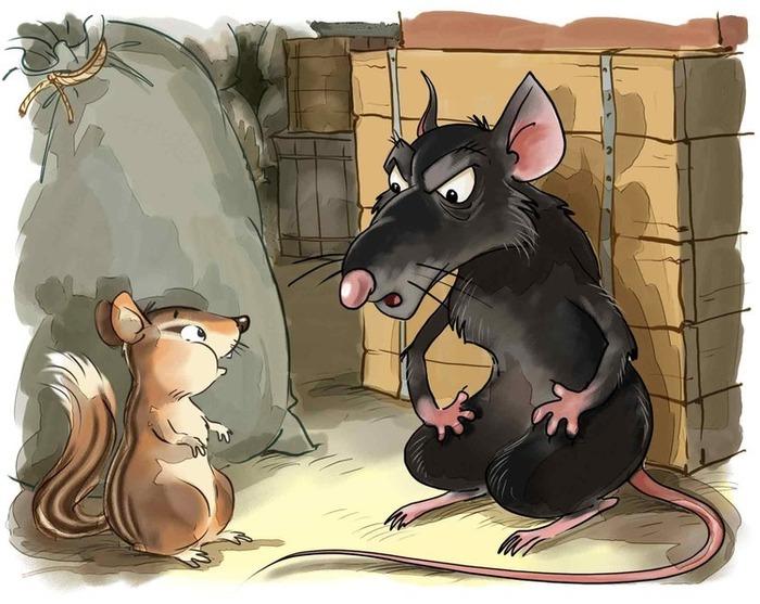 точно картинка к басне мышь и крыса расположить ящики