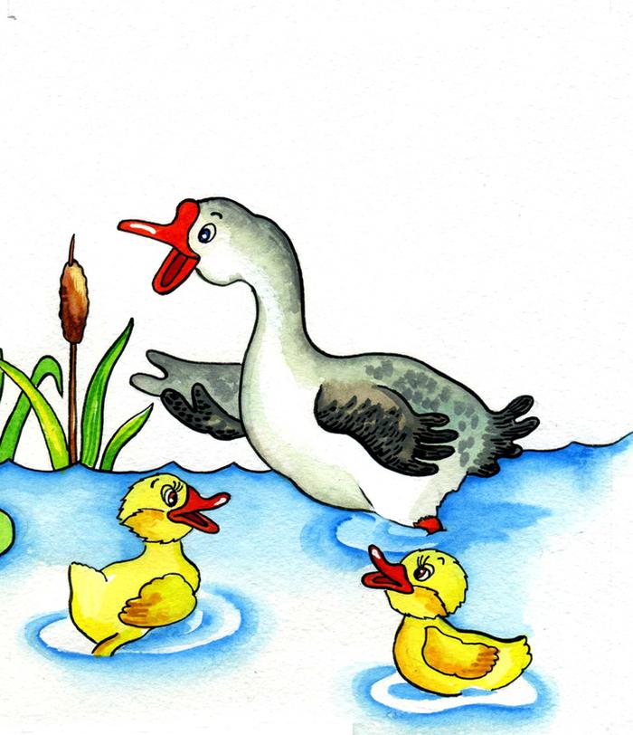 Гусыня с гусятами картинки для детей