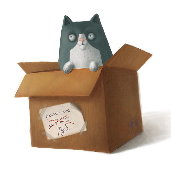 пилы кот в коробке картинки изменения ткани, напоминающие