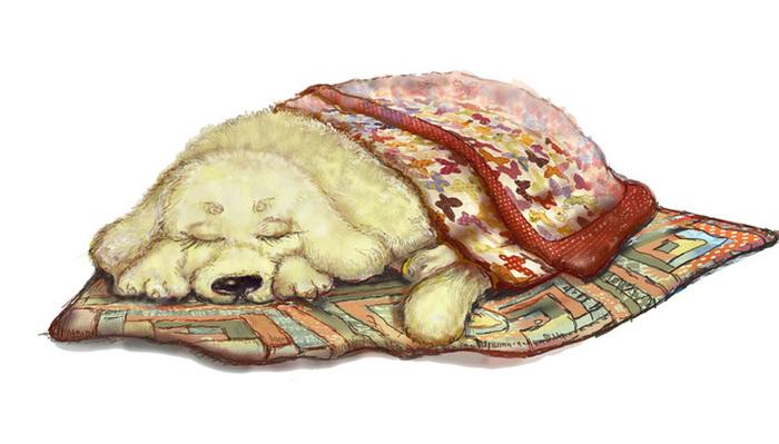 Спящая собака картинки нарисованные