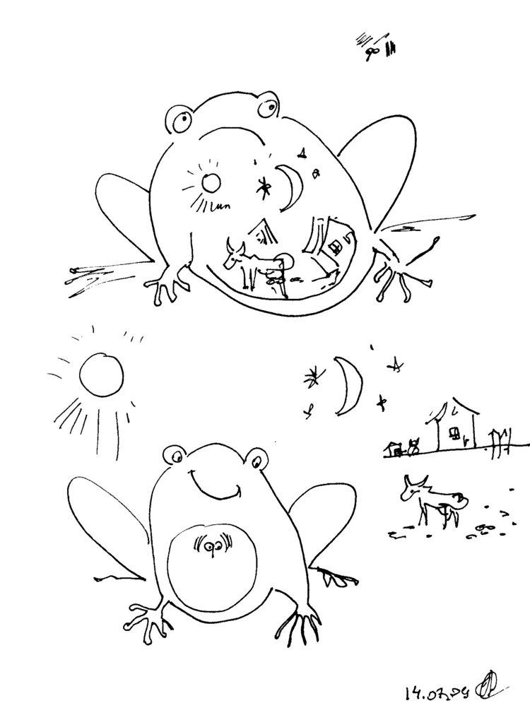 Бабочка.  Цикл развития.