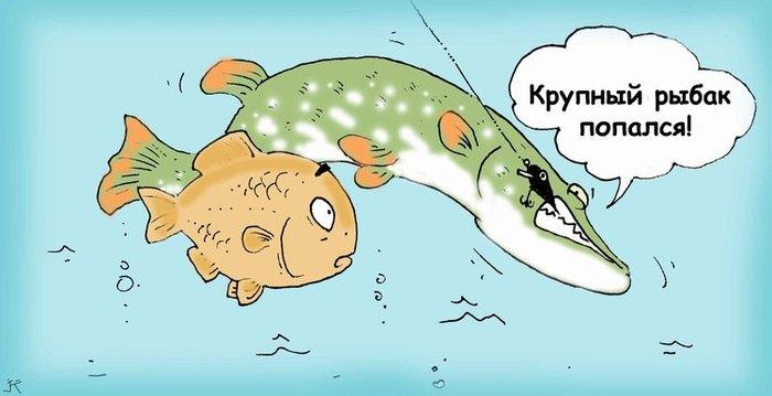 загадка про рыбаков и рыбу