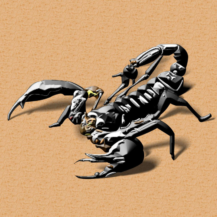 an overview of the scorpion from the class arachnid