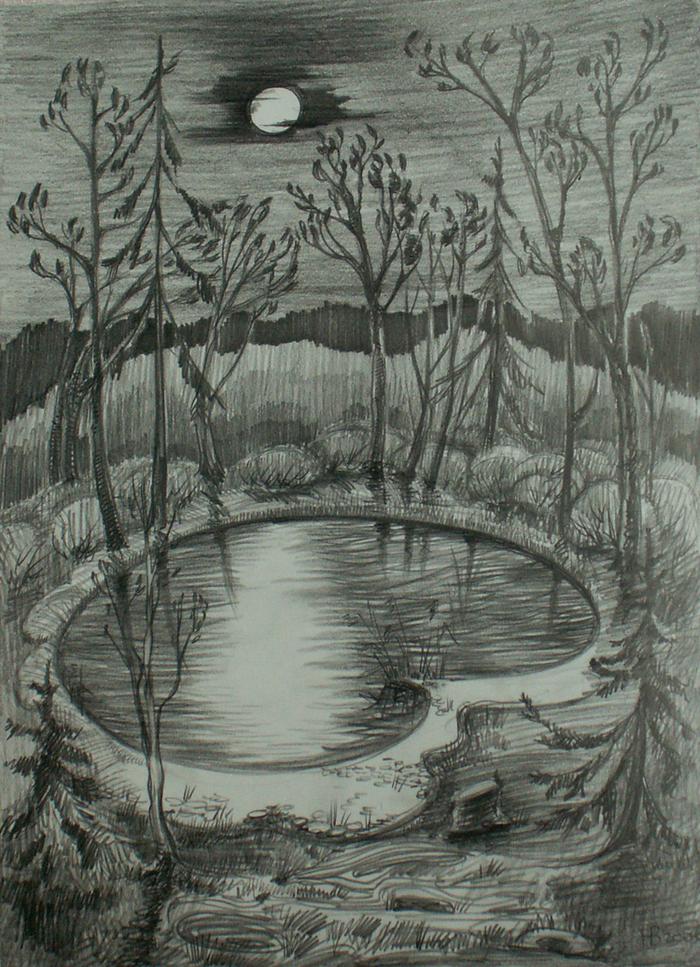 фото деревьев у пруда карандашом остывший