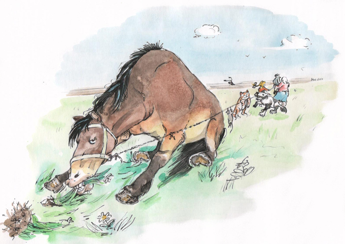 Маме открытку, смешные лошади картинки карикатуры