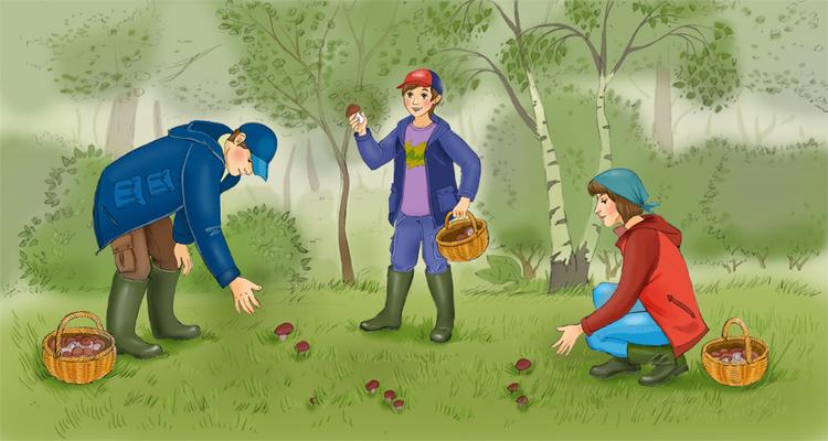 Я собираю грибы рисунки