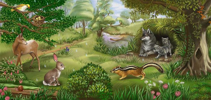 что картинки лесного сообщества про грязных