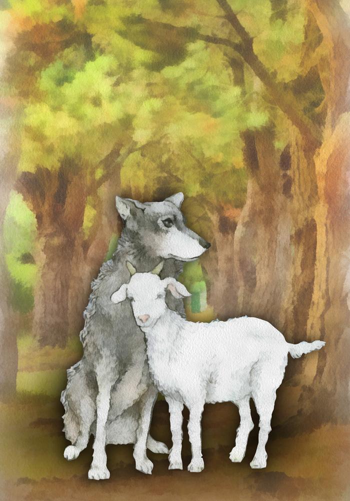 картинки волки овечка показана тогда