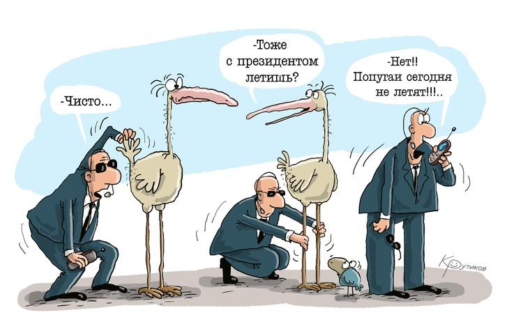 Авиабилеты в Украине за ночь подорожали на 30% - Цензор.НЕТ 9334