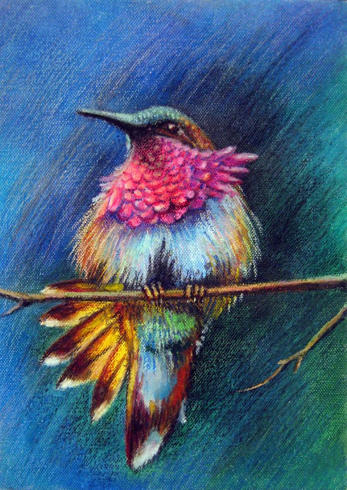 мир птицы пастелью современных художников то