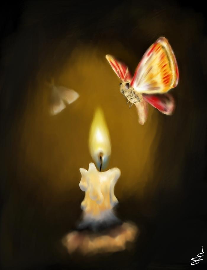 Картинки мотылек летит на огонь и вода