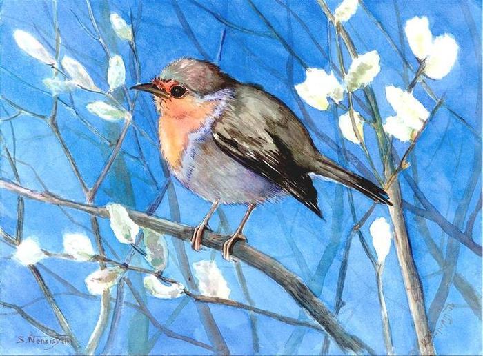 Учимся рисовать птиц поэтапно для 75