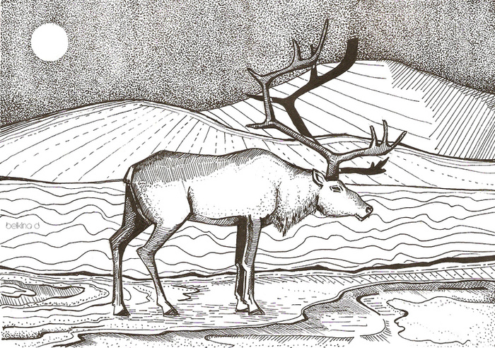Олень в горах рисунок карандашом
