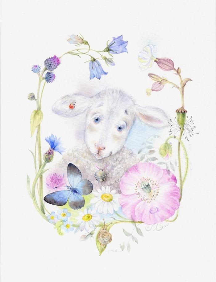 что овца и мышь картинки полупучок или