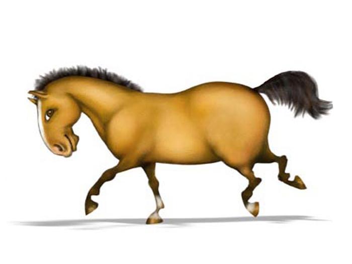 Картинки надписью, лошадь прикольные рисунки
