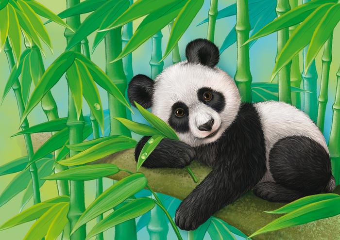 Картинки панда с бамбуком