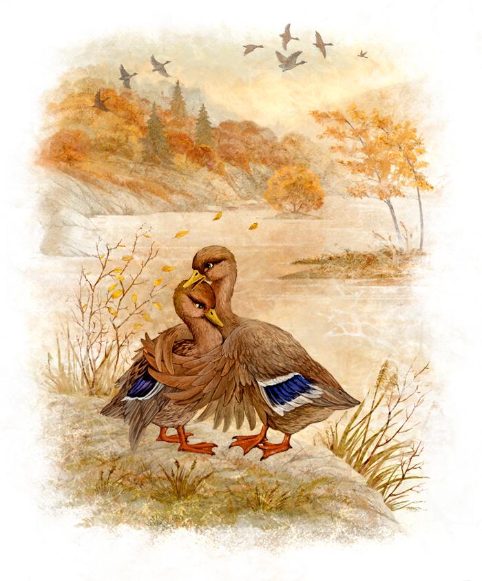 Старые открытки утки