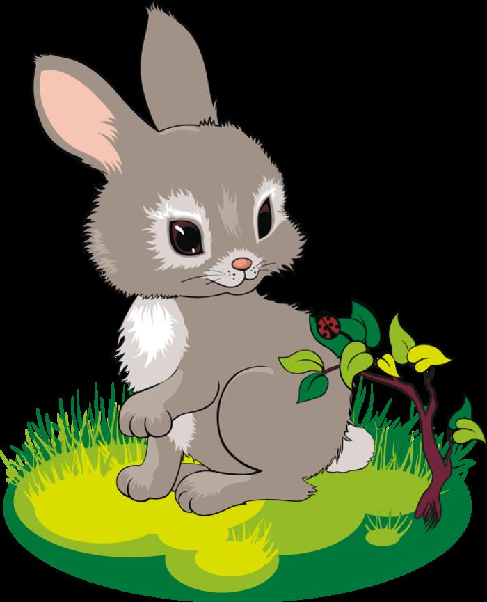 Снятия, детские открытки зайчики
