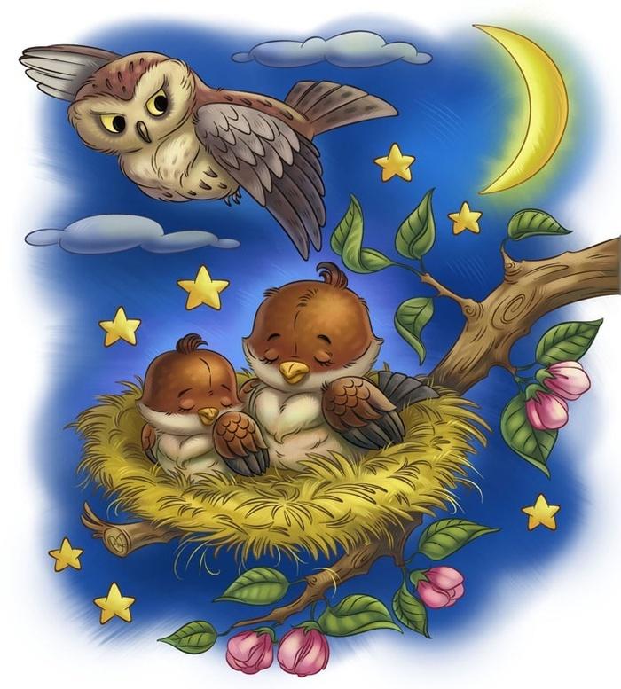 Спокойной ночи красивые открытки птицами и природой, хорошенькие картинки