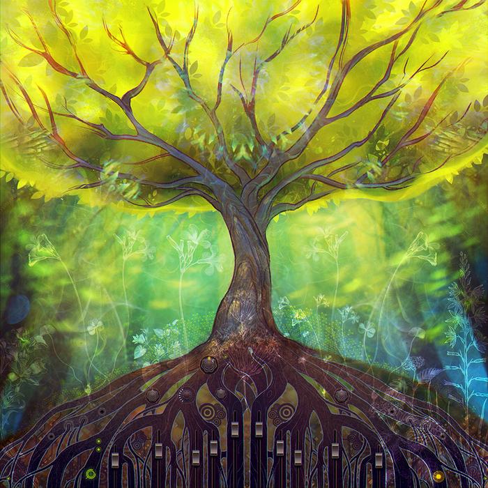 энергия дерева картинки все