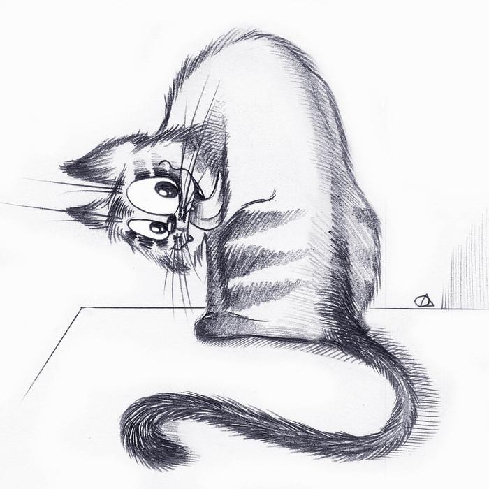 кухонной зоны картинки кошек карикатуры понятно видео
