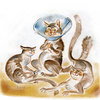 User illustration thumb 20160808 cats 01