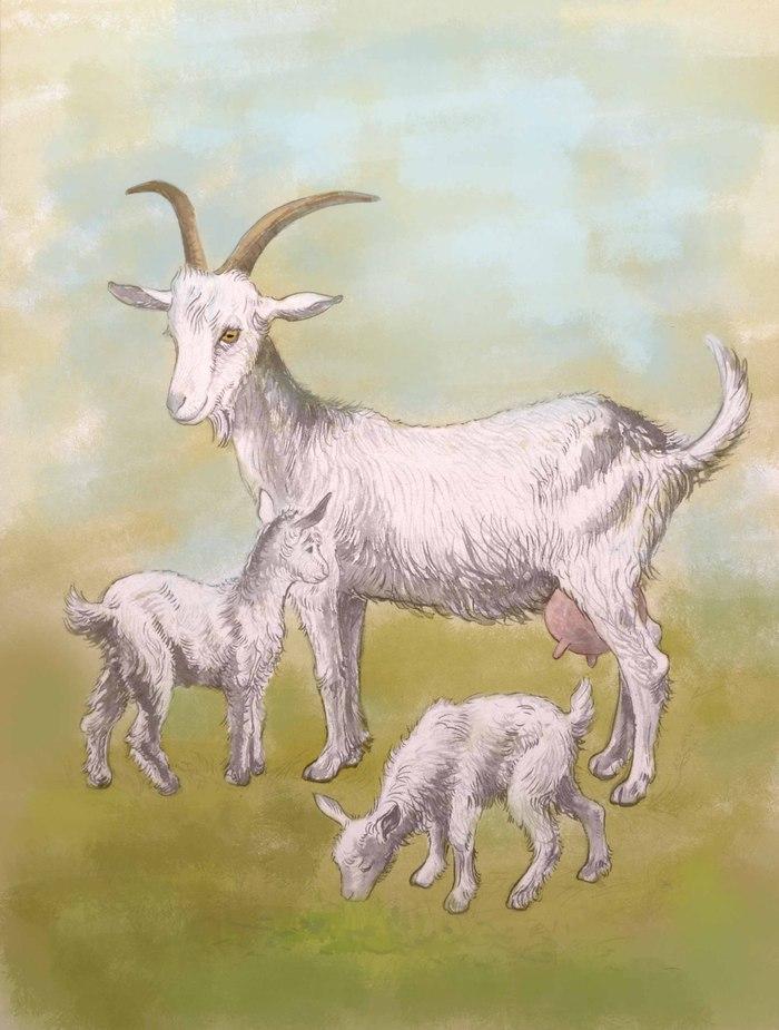 что коза с козлятами веретенникова картинки собирается под глазами