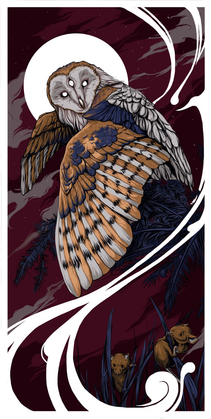 Утес белой совы картинки